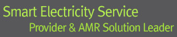 smart electricity service provider & AMR solution leader